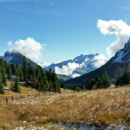 Konfirmation mit Zen Mönch Schweiz
