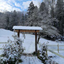 Dreikönigstag im Zen Kloster in der Schweiz. Ein Ort der Stille und Leere zum Meditieren.