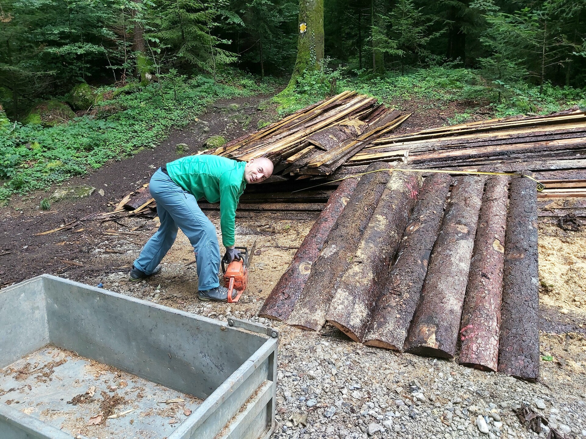 Building a shed to keep the firewood