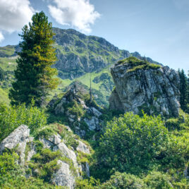 Hiking meditation in the Swiss Alps - Lambda Zen Temple